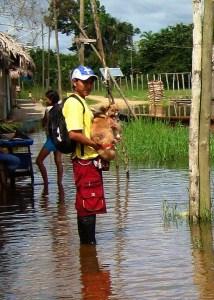 save dog