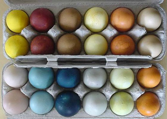 How to Make Natural Easter Egg Dyes | Families.com