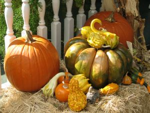 Get Your Porch Organized and Decorated for Fall | Families.com