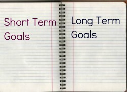 short term long term career goals mba essay This report talks about the short term and long term career goals and steps of career strategies used to achieve the career goals it also specifies the.