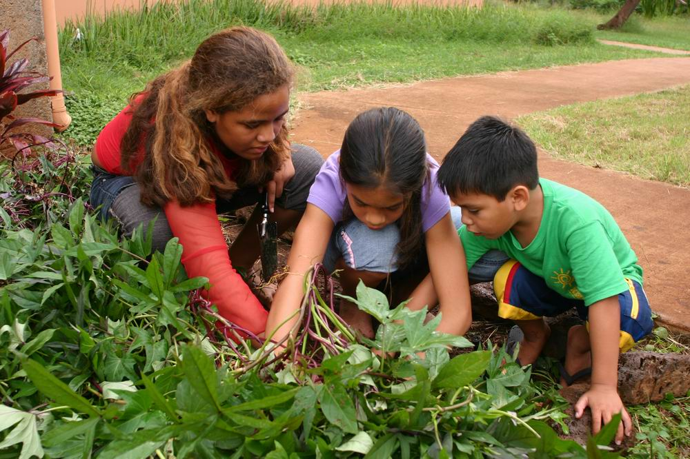 Teaching Responsibility Through Gardening Single Parents