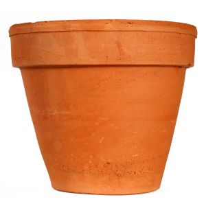Container gardening choosing a container home families right now i have a mish mash of pots and planters on the deck at the front of our house our back garden is quite shady and not particularly conducive to workwithnaturefo